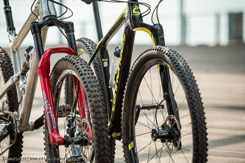 Mountainbike-Federgabeln