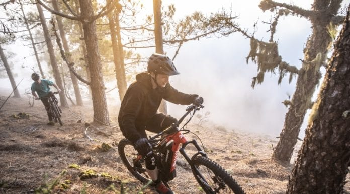 Urteil: Mountainbiker auf dem Holzweg
