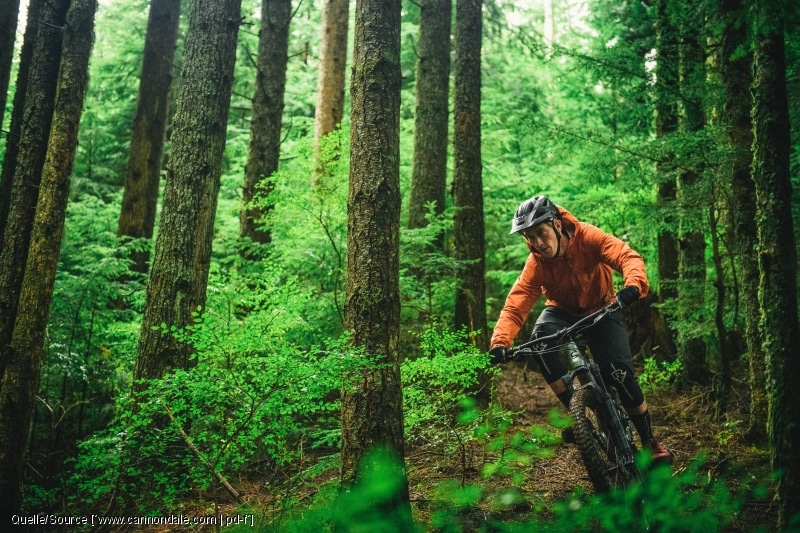 Nightride - Nachtfahrverbot für Wälder