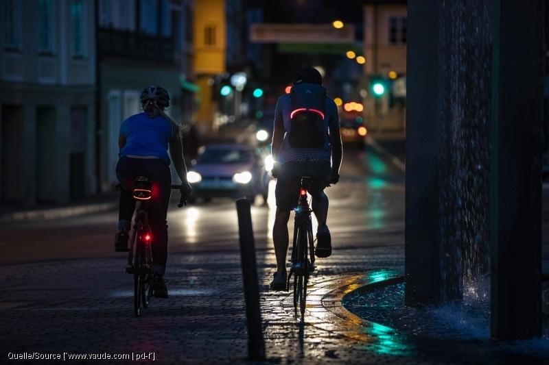 Rücklich Pedelec E-Bike