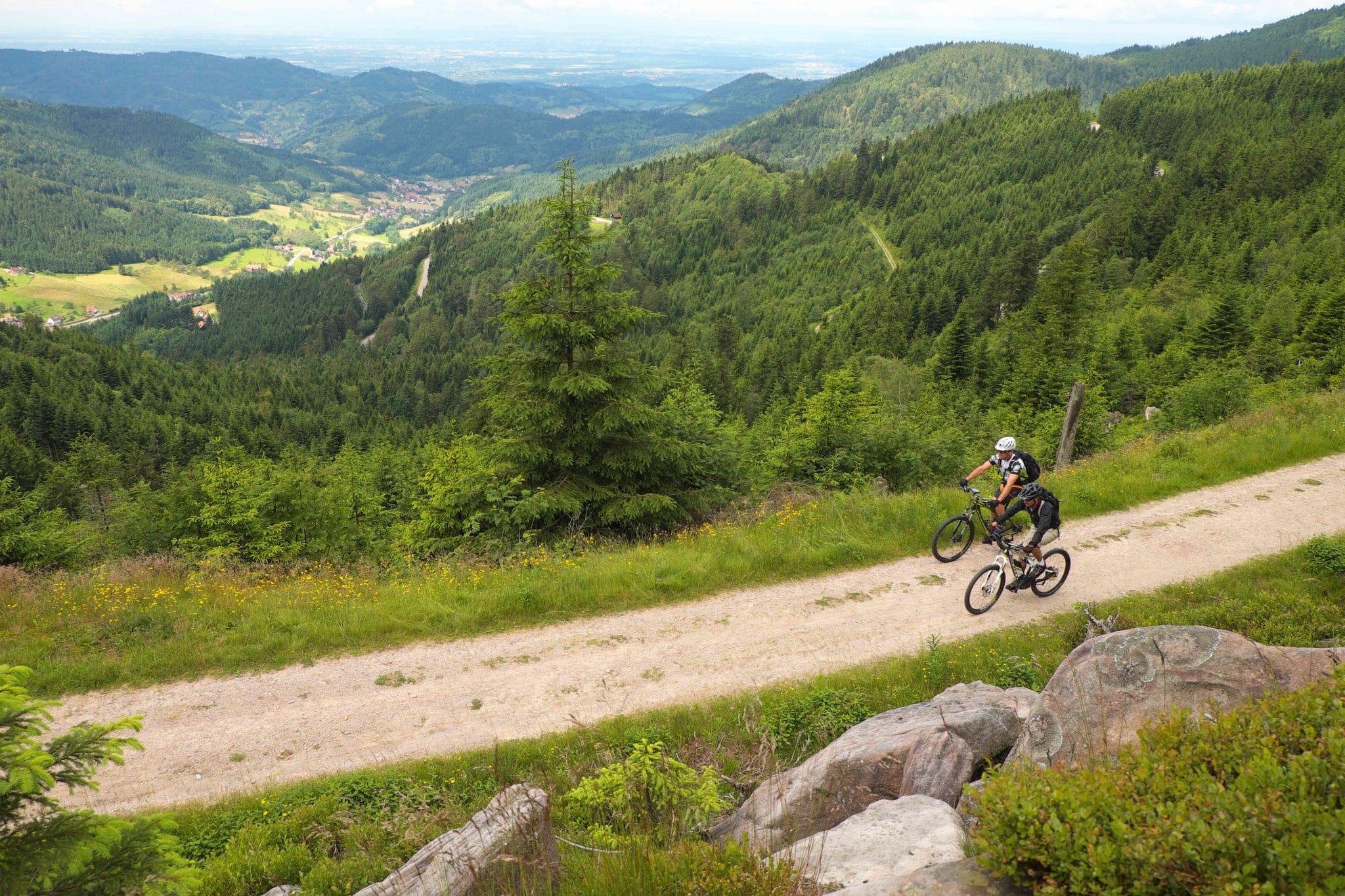 Genussradeln im Schwarzwald