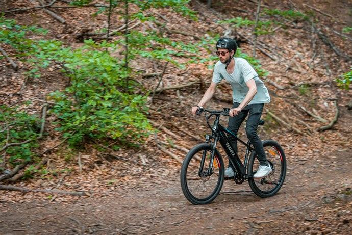 Einsteiger E-Bike